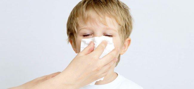 fiebre por catarro